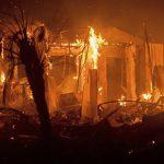 И в Армении лесные пожары