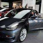 В автомобилях Tesla появился режим для собак