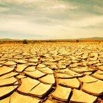 Сберечь источник жизни – электронные технологии помогут в борьбе с засухой