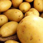 «Я могу продавать картофель за 2 маната. Это мое право»