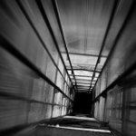 Лифтами по Илону Маску: батут уже не актуален