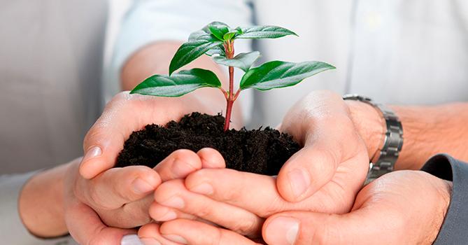 Создание специализированного банка агарной отрасли вновь на повестке
