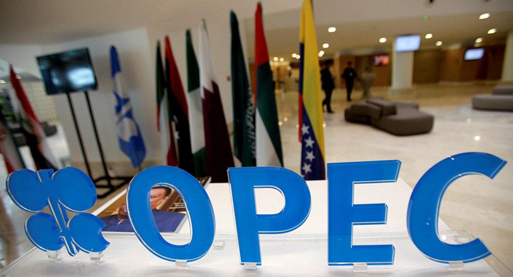 Страны ОПЕК+ пока не могут договориться о квотах по сокращению добычи нефти