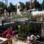 Почем могила для народа? – передача кладбищ муниципалитетам не решила проблему