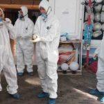 АПБА уничтожило 2.5 тонн мяса неизвестного происхождения
