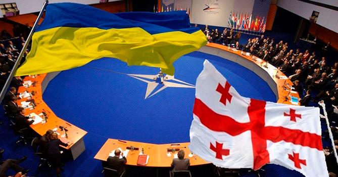 «Открытые двери» НАТО и неугомонные грузины…