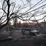 Число жертв лесного пожара в Калифорнии увеличилось до 48