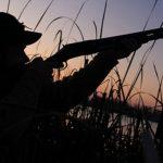 В Азербайджане у браконьеров изъято охотничье ружье