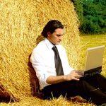 Страхование агрорисков: будет ли от него толк?