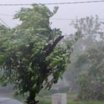 В Баку и на Абшеронском полуострове ветер усилился до 35 м/с - министерство