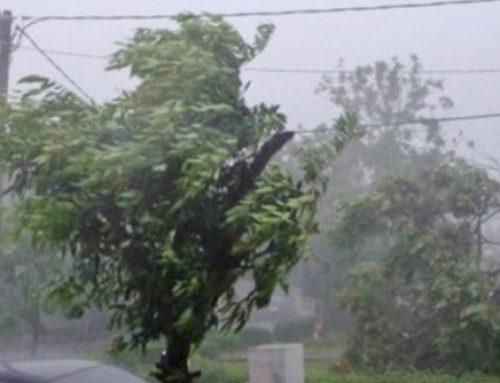 В Баку и на Абшеронском полуострове ветер усилился до 35 м/с — министерство