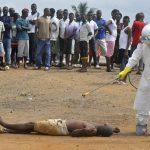 Жертвами лихорадки Эбола в Конго стали более 500 человек