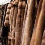 В Лос-Анджелесе с 2021 года запретят продавать и производить одежду из натурального меха
