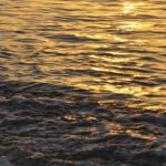 Возбуждено уголовное дело по факту смерти упавшего в море сотрудника SOCAR