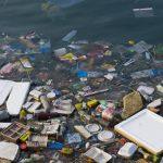 Еврокомиссар полагает, что катастрофу мирового океана удастся избежать