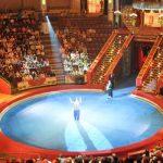 В Азербайджане будет построено новое здание цирка