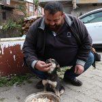 Житель турецкой провинции Ризе путем искусственного дыхания спас собаку