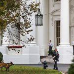 В мае вступит в должность новый директор Секретной службы США