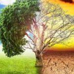 Парниковый эффект: глобальная угроза или мировая афера?