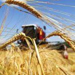 Пересмотрены коэффициенты к аграрным субсидиям