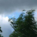 Более 100 населенных пунктов в Украине остались без электричества из-за непогоды