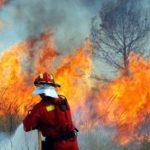 Самый сильный за 20 лет пожар уничтожил более 4 тыс. га леса в Испании