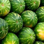 На рынках Азербайджана продаются только местные арбузы