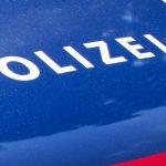 В Австрии политик стрелял с балкона по воображаемым портретам президента