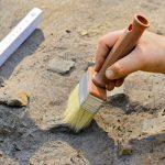 Археологи Турции начали раскопки в Сибири