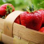 Рекордные цены на клубнику в Баку - любимая всеми ягода подорожала в три раза к прошлому году