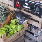 Ответить за базар: нелегальная уличная торговля набирает обороты