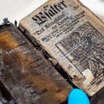 На затонувшем 300 лет назад судне нашли полностью сохранившуюся книгу