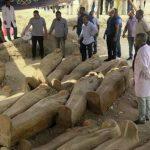 Египетские археологи обнаружили более 80 древних захоронений