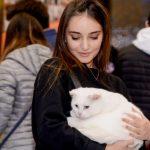 Послы европейской молодежи обсудиливопросы защиты животных с азербайджанской молодежью