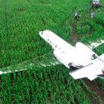 В Аргентине самолет совершил аварийную посадку на кукурузное поле