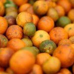 В Азербайджане утилизировано 500 кг мандаринов непригодных к употреблению