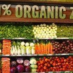 Экопродукты в массы: каковы перспективы органического производства в Азербайджане?
