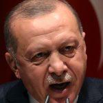 Эрдоган рассказал о предложении Путину по Сирии
