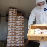 В Азербайджане уничтожены сотни килограммов импортной утятины