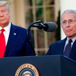 Трамп не собирается увольнять Фаучи