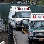 В США число случаев коронавируса увеличилось за сутки на 23,7 тысячи