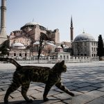 В конце недели в Турции на 4 дня введут комендантский час