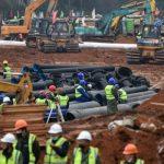 В результате строительства страдает животный мир: необходима оценка экологических рисков