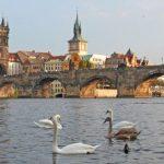 Прага выгнала дезинформаторов из посольства РФ