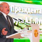 Лукашенко не исключил перевыборы после принятия новой Конституции