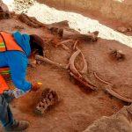 Найдены свидетельства того, что в Северной Америке 26 500 лет назад жили люди