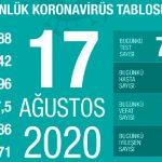 За последние сутки в Турции от коронавирусной инфекции скончались 22 жителя страны