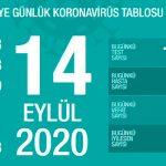 В Турции от COVID-19 вылечились свыше 260 тыс человек