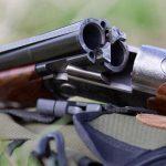 В Азербайджане приостановлена охота на диких животных и птиц