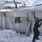 """Госдеп обвинил Россию в """"поверхностной поддержке"""" сирийских беженцев"""